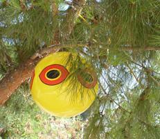 kuş kovucu balon